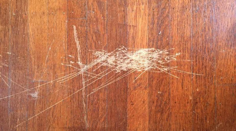 jika memilih lantai kayu