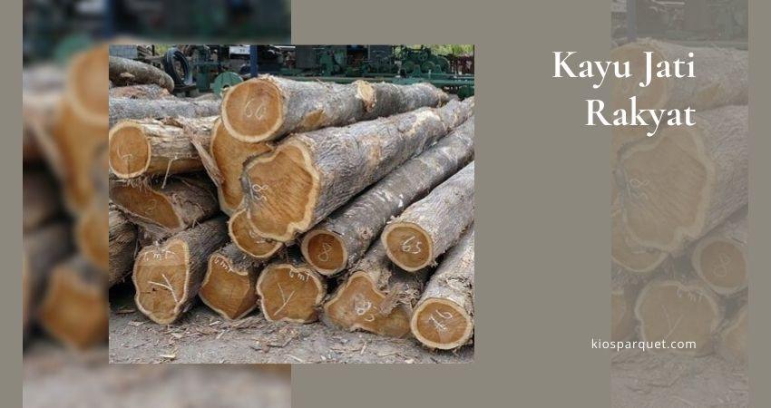 kayu jati rakyat/kampung